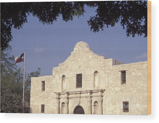 Texas Wood Print featuring the photograph The Alamo San Antonio Texas by John Mitchell