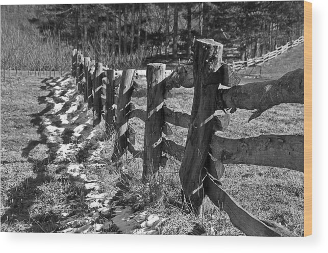 Split Wood Print featuring the photograph The Fence by Susan Leggett