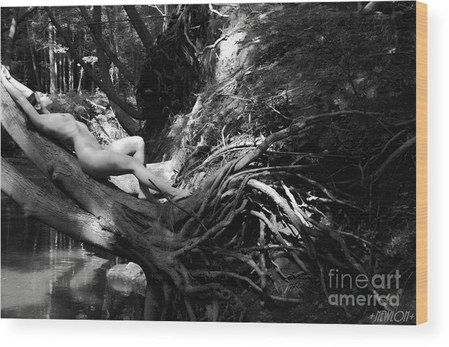 Nude Wood Print featuring the photograph The Silent Place by J N