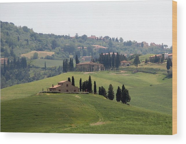 Tuscany Wood Print featuring the photograph Tuscany by Carla Parris