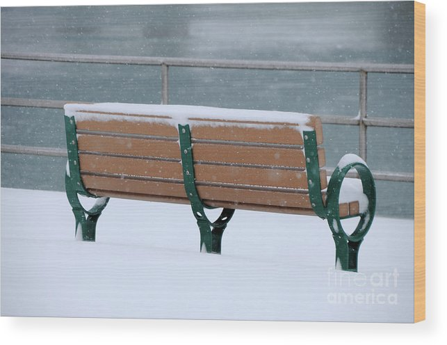 Bench Wood Print featuring the photograph Waiting For Summer by Ronald Grogan