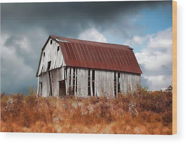 Stormy Wood Print featuring the photograph Weathering The Storm by Renee Hardison
