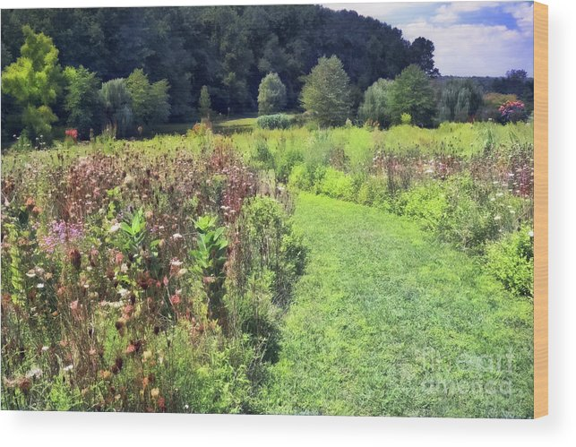 Garden Wood Print featuring the photograph Wildflower Field Afternoon by Susan Isakson