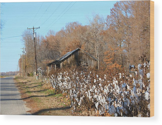 House Wood Print featuring the photograph Back Roads Of Ms by Karen Wagner
