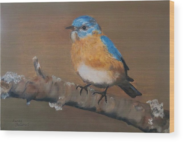 Birds Wood Print featuring the photograph Bluebird by Sandra Bourret