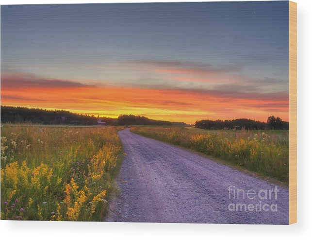 Atmosphere Wood Print featuring the photograph Country Road by Veikko Suikkanen