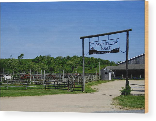 Deep Hollow Ranch Wood Print featuring the photograph Deep Hollow Ranch Montauk by Christopher Kirby