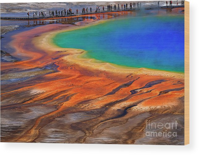 America Wood Print featuring the photograph Grand Prismatic Spring Yellowstone National Park Tourists Viewin by Lane Erickson