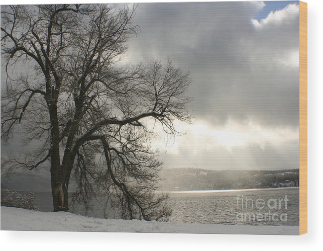 Lake Wood Print featuring the photograph Luminescence by Idaho Scenic Images Linda Lantzy