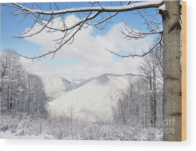 West Virginia Wood Print featuring the photograph Mcguire Mountain Overlook by Thomas R Fletcher