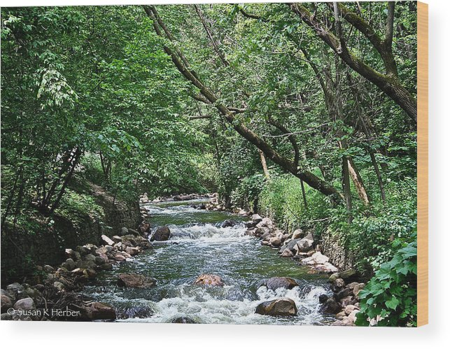 Outdoors Wood Print featuring the photograph Minnehaha Creek by Susan Herber