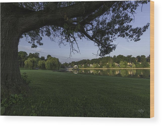 Onondaga Park Wood Print featuring the photograph Morning In The Park by Everet Regal