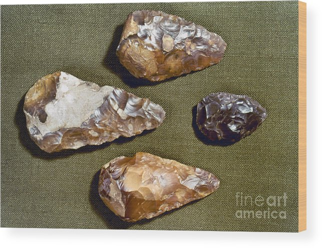 200000 Wood Print featuring the photograph Paleolithic Tools by Granger