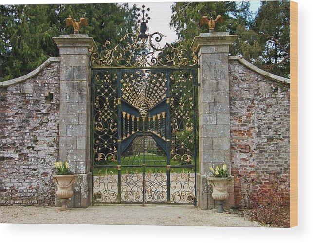 Powerscourt Estate Wood Print featuring the photograph Powerscourt Estate 8 by Marisa Geraghty Photography