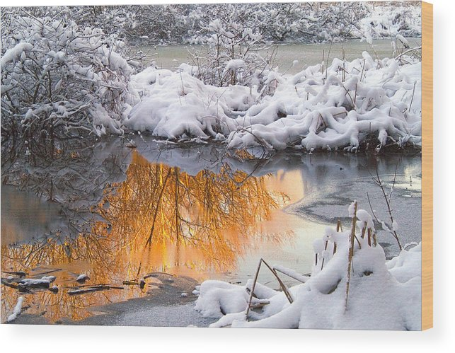 Reflections Wood Print featuring the photograph Reflections In Melting Snow by Neil Doren