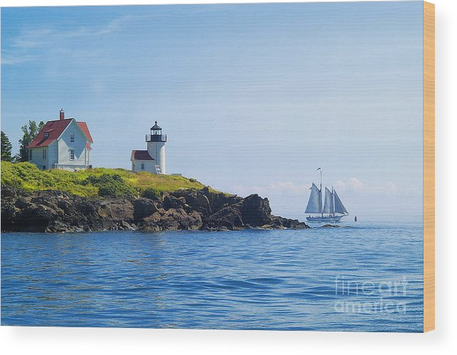 Sailing Wood Print featuring the photograph Sails Off Curtis Island Light by Neil Doren