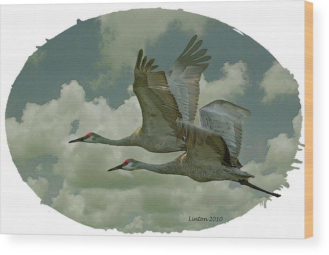 Sandhill Crane Wood Print featuring the digital art Sandhill Crane Pair by Larry Linton