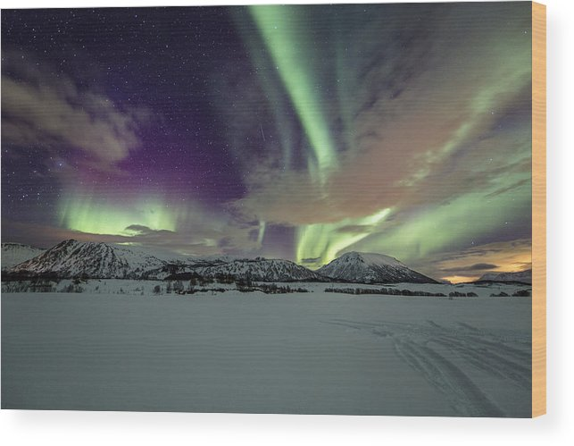 Frank Olsen Wood Print featuring the photograph Snowy Field by Frank Olsen