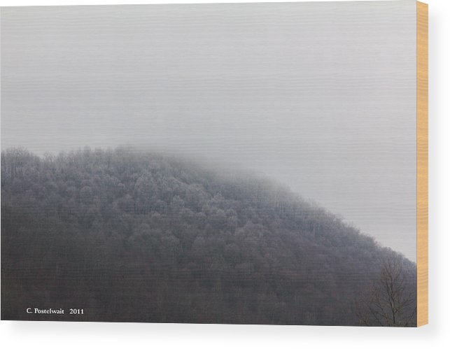 Trees Wood Print featuring the photograph Stormy Day by Carolyn Postelwait