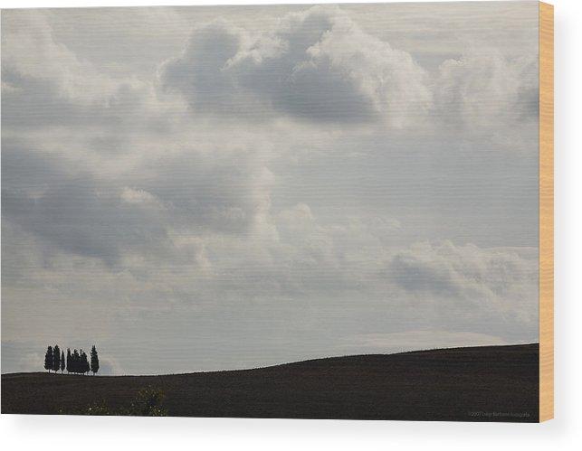 Italy Wood Print featuring the photograph Tuscany by Luigi Barbano BARBANO LLC