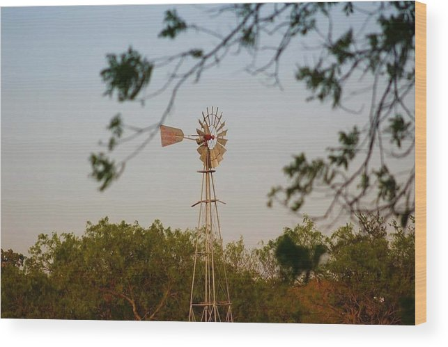 Landscape Wood Print featuring the photograph Windmill by Suzette Munson
