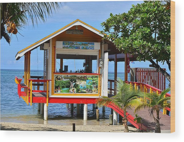 Wood Print featuring the photograph Roatan Life by Gianni Bussu