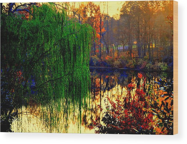 Lake View Wood Print featuring the digital art Autumn Colors by Aron Chervin