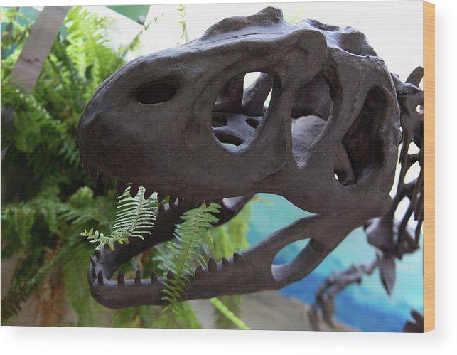 Centro De Investigaciones Paleontologicas Wood Print featuring the digital art Centro De Investigaciones Paleontologicas by Carol Ailles