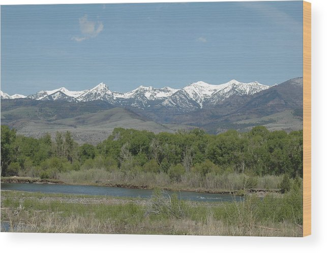 Landscape Wood Print featuring the photograph Untitled by Kathy Schumann