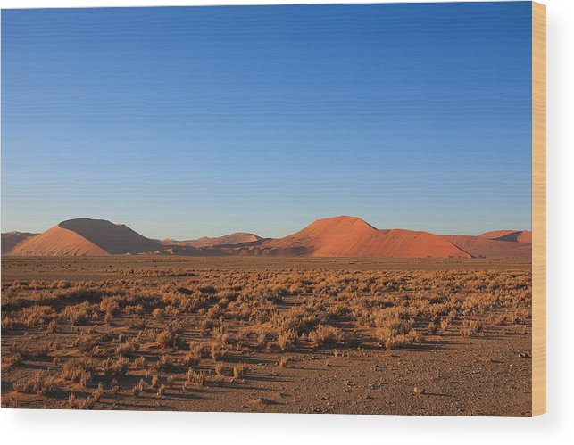 Kalahari Wood Print featuring the photograph Sossusvlei Dunes by Davide Guidolin