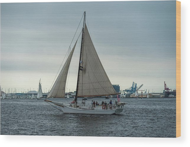 2017 Wood Print featuring the photograph Skipjack by Jim Archer