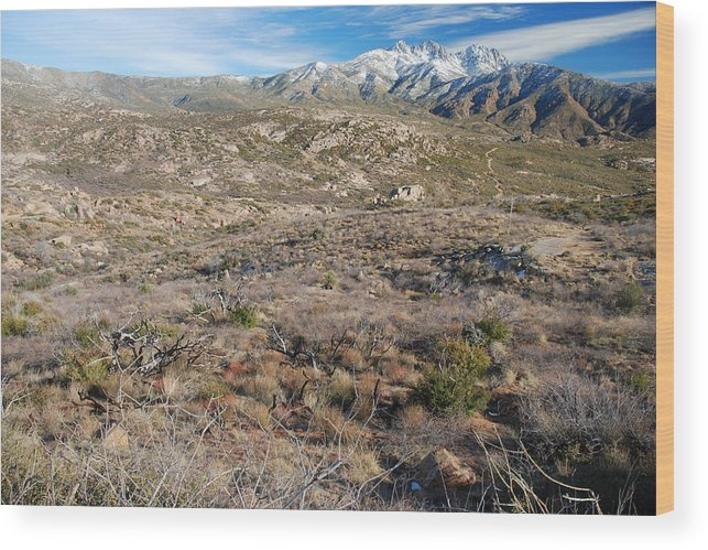 Mountain Wood Print featuring the photograph Snowy Four Peaks Arizona by Brian Lockett