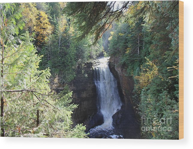 Water Wood Print featuring the photograph Waterfall by Brenda Ackerman