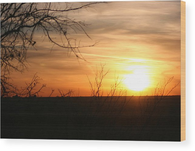 Landscape - Sunset Wood Print featuring the photograph West Texas Sunset by Val Conrad