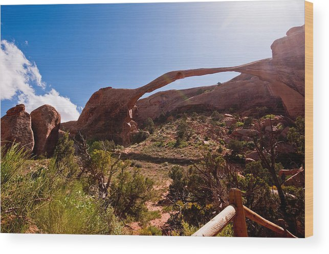 Arches Wood Print featuring the photograph Arches N.p. by Larry Gohl