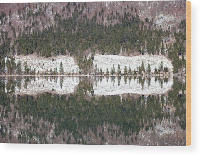 Alpine Wood Print featuring the photograph Lake Bohinj by Andre Goncalves