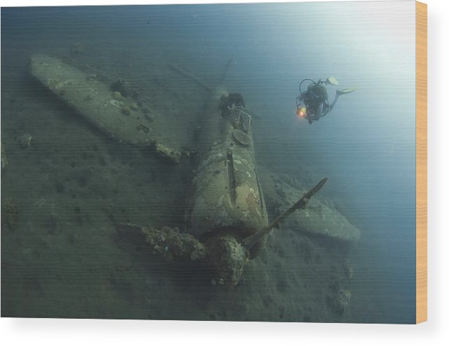 Kimbe Bay Wood Print featuring the photograph Diver Explores The Wreck by Steve Jones
