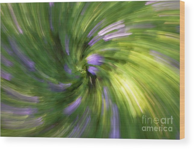 Abstract Wood Print featuring the photograph A Swirl Of Color Abstract by DeeDee Yelverton