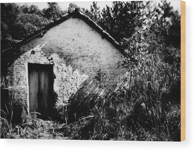 House Wood Print featuring the photograph Abandoned by Amarildo Correa