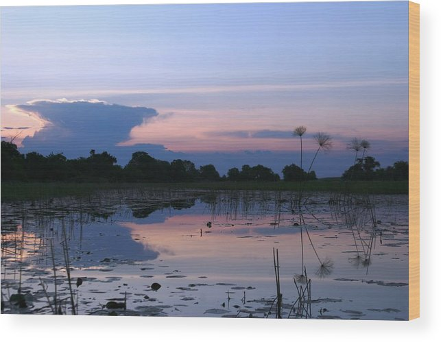 African Delta Wood Print featuring the photograph African Delta by Linda Russell