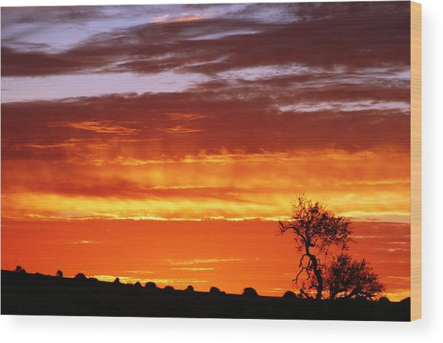 Sunset Wood Print featuring the photograph African Sunset by Linda Russell