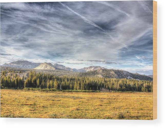 Landscape Wood Print featuring the photograph Afternoon Clouds by Jason Anderson