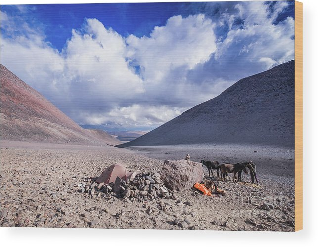Atacama Wood Print featuring the photograph Aguas Vicunas by Olivier Steiner
