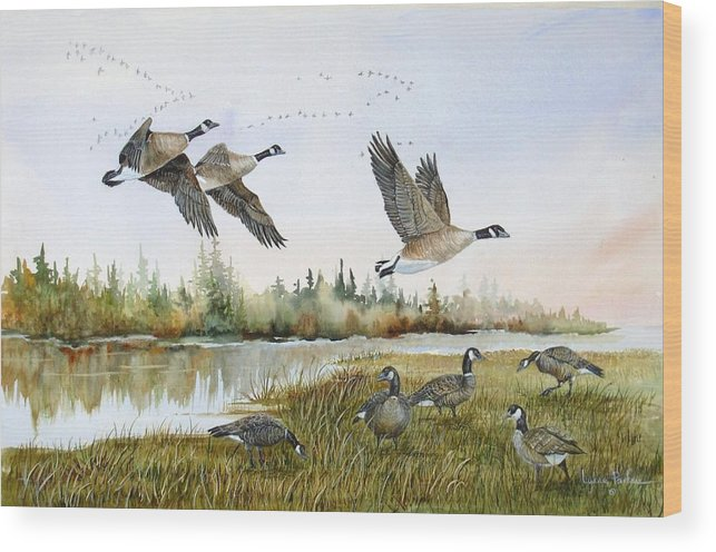 Aleutian Geese Wood Print featuring the painting Aleutian Geese At Lake Earl by Lynne Parker