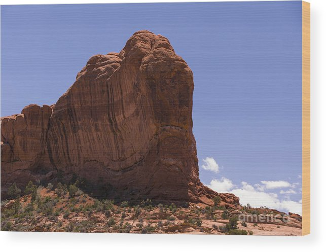 Rock Wood Print featuring the photograph Alien by Louise Magno