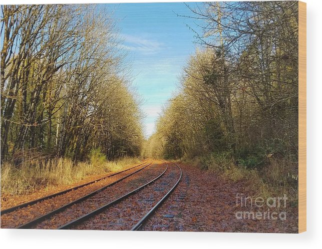 Old Railroad Wood Print featuring the photograph Along The Old Railroad by Jane Powell