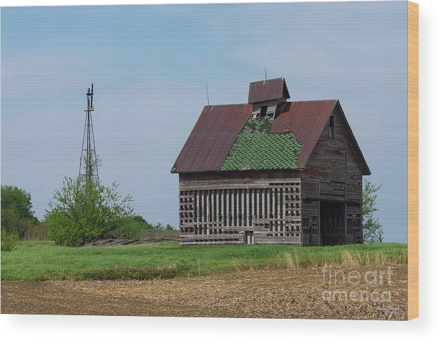 Abandoned Wood Print featuring the photograph An Old Illinois Barn by Jennifer White