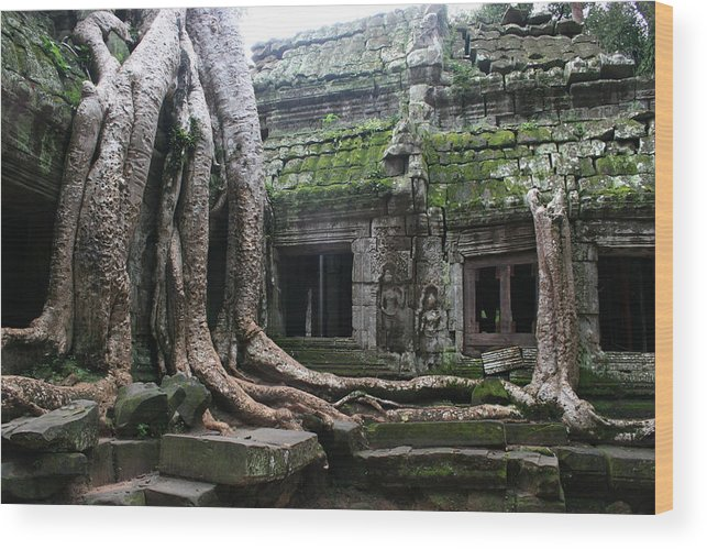 \angkor Wat\ Cambodia \siem Reap\ Historical Ancient Kymer Tree Roots Moss Wood Print featuring the photograph Angkor Wat by Linda Russell
