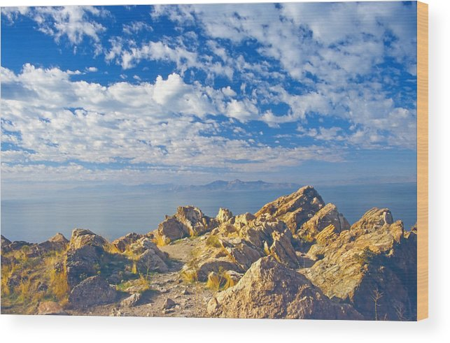 Landscape Wood Print featuring the photograph Antelope Island 4 by Steve Ohlsen