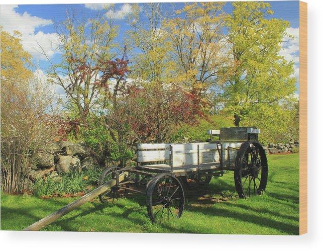 Farm Wood Print featuring the photograph Apple Farm Cart by John Burk